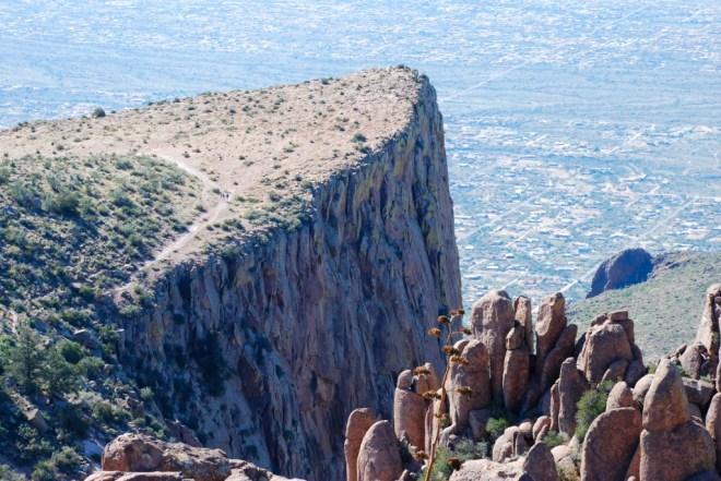 Image credit: www.jfryhale.com