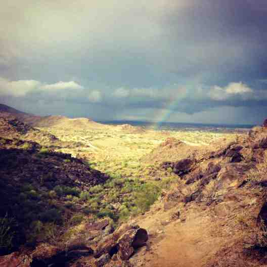 What a treat! This was taken on Summit #1 Holbert Trail in South Mountain.